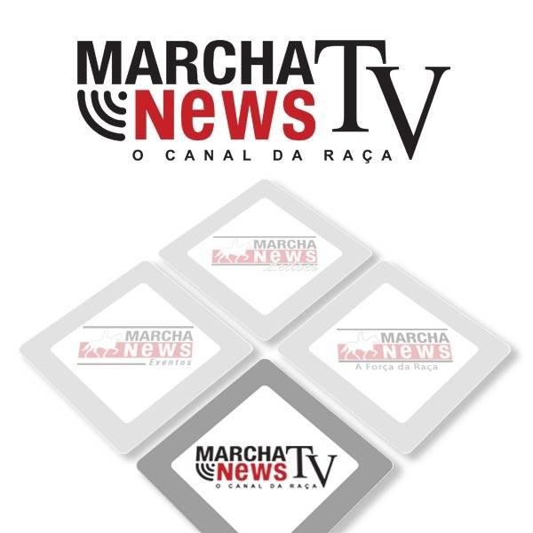 Marcha News TV